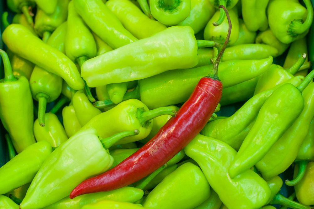red pepper in a stack of green peppers