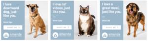 amanda foundation digital pawprint ads